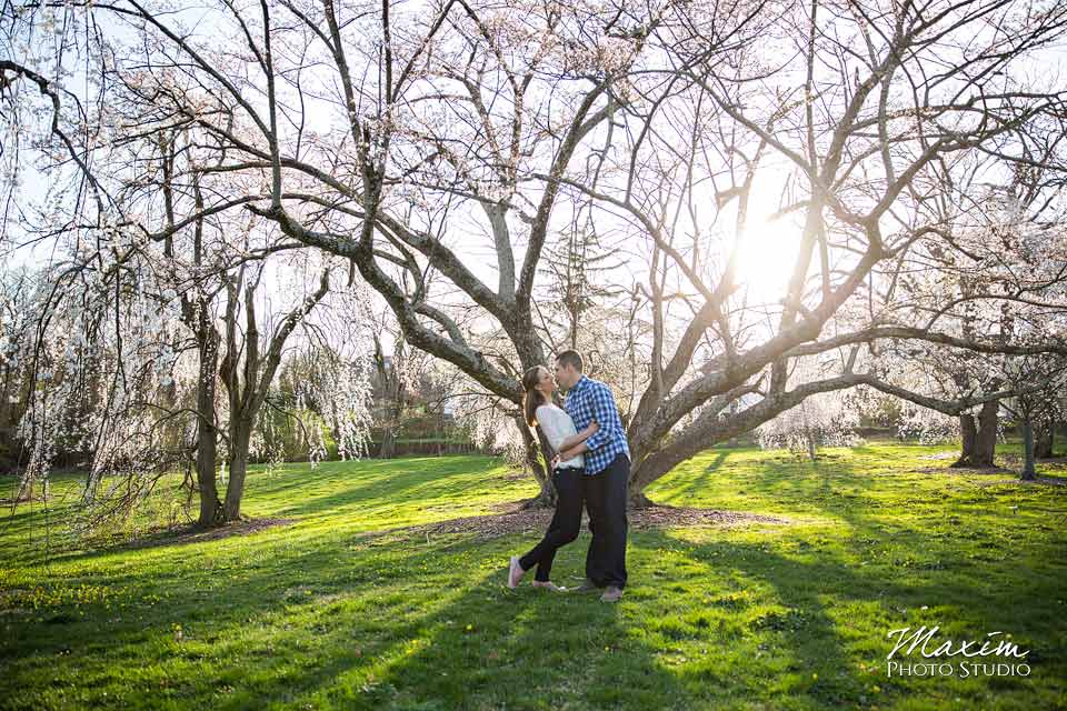 ault park cherry blossoms engagement