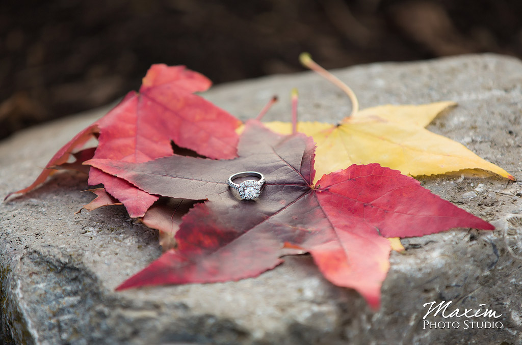Cox Arboretum Dayton Ohio Fall Engagement ring