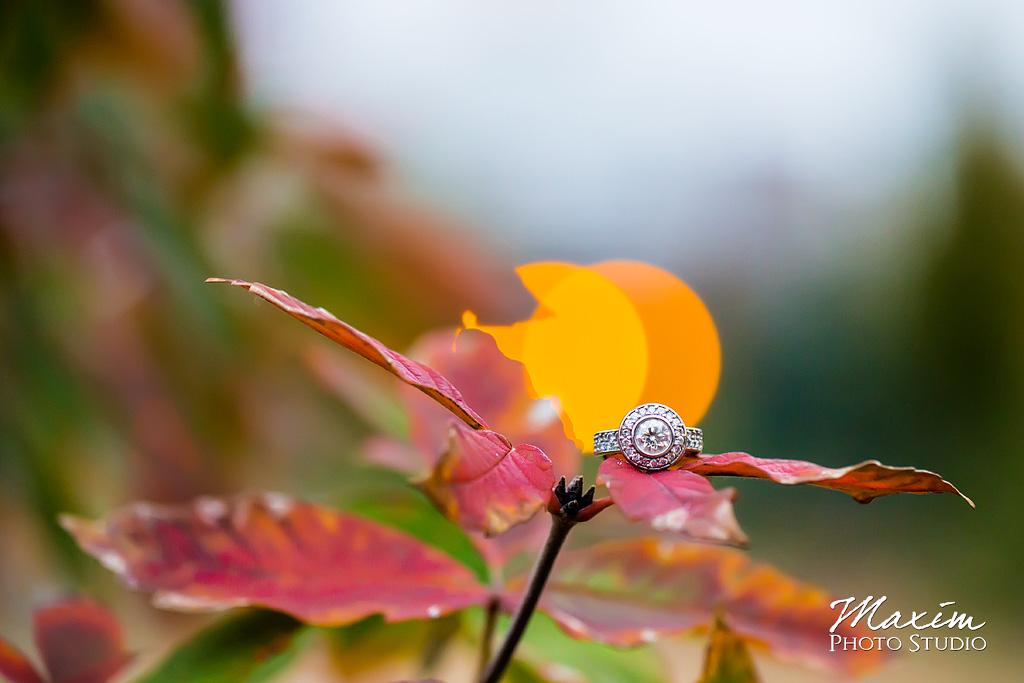 Washington Park Cincinnati Engagement rings