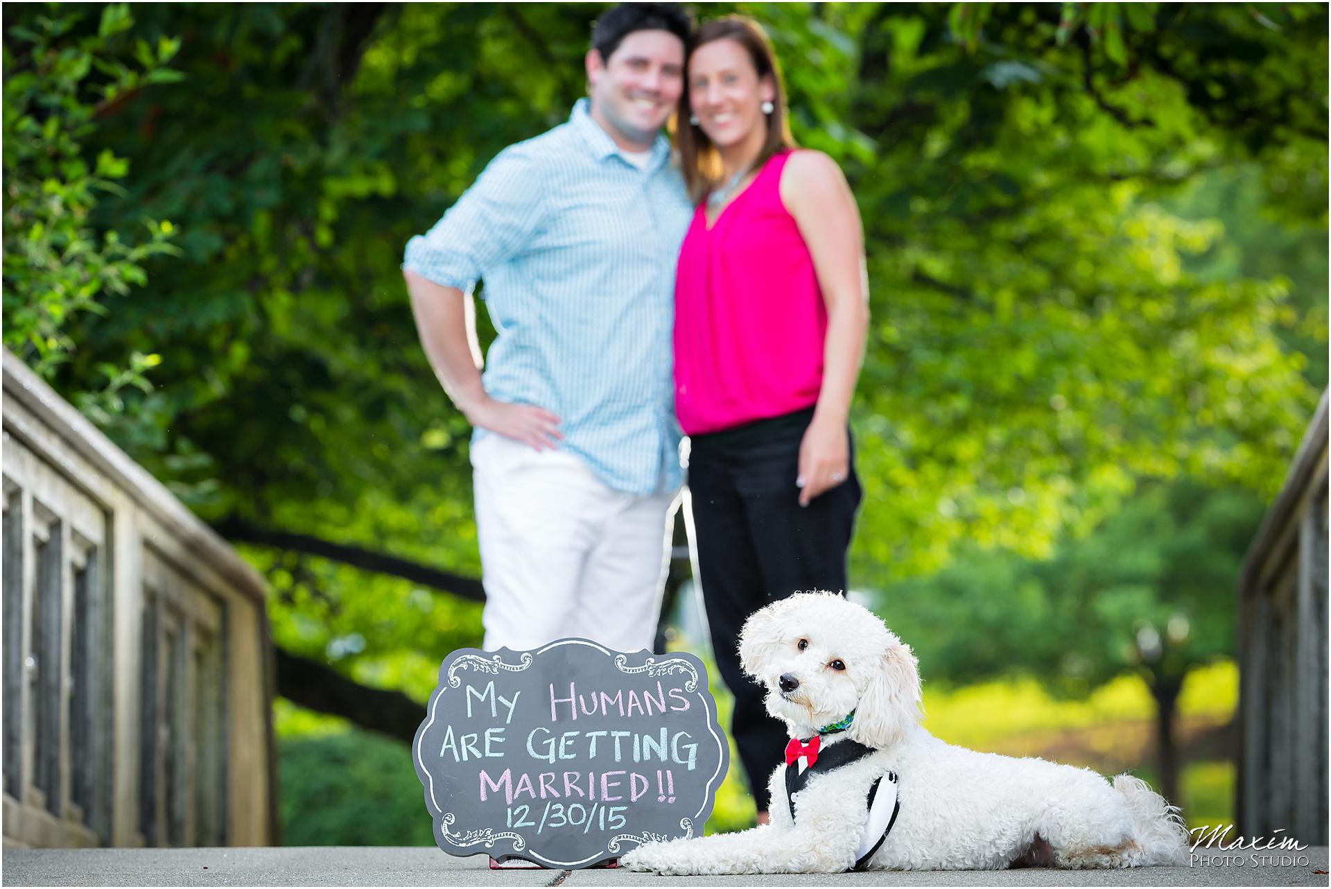 Eden Park Cincinnati Dog engagement