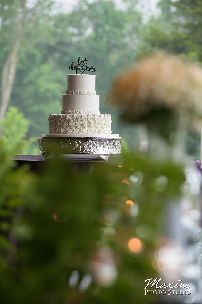 Frosted Wedding Cake Cedar Springs Pavilion