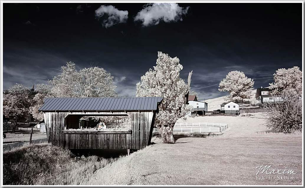 Neltners Farm Engagement photography