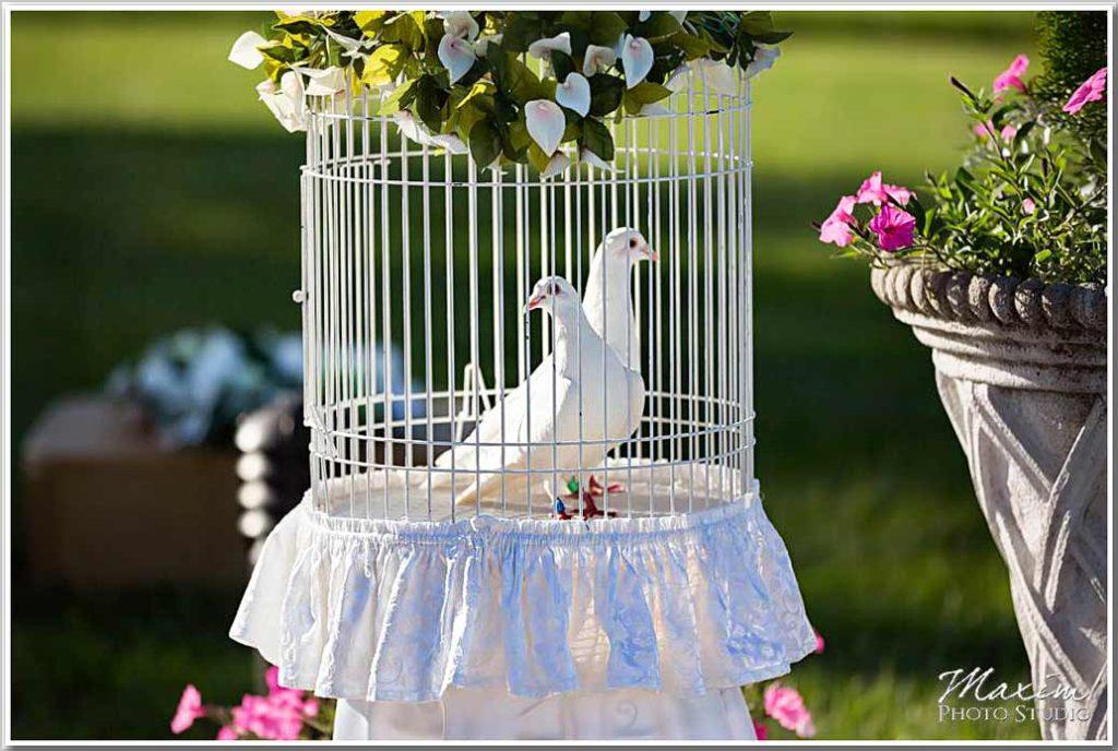 Drees Pavilion white doves wedding ceremony