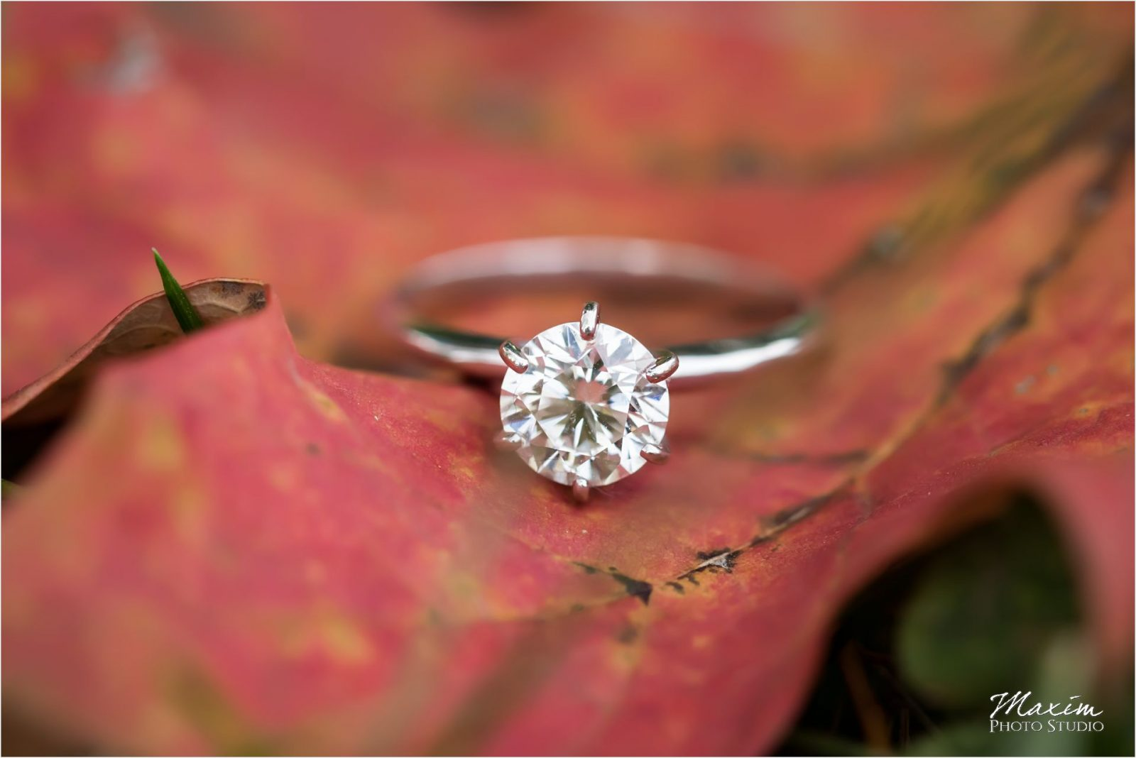 Ault Park Cincinnati Sunset Engagement Wedding ring