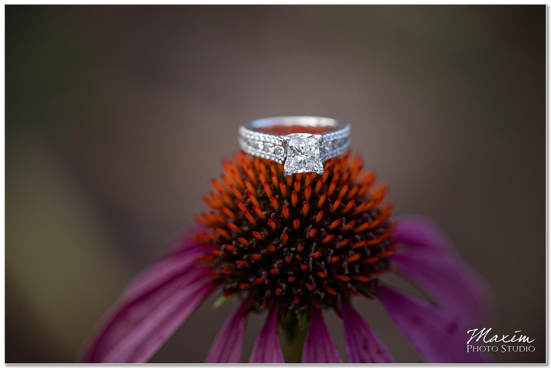 Cox Arboretum wedding ring flower