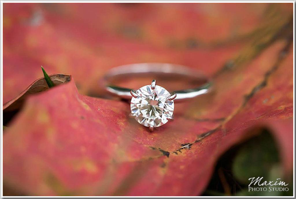 Ault Park Cincinnati Wedding ring leaf engagement