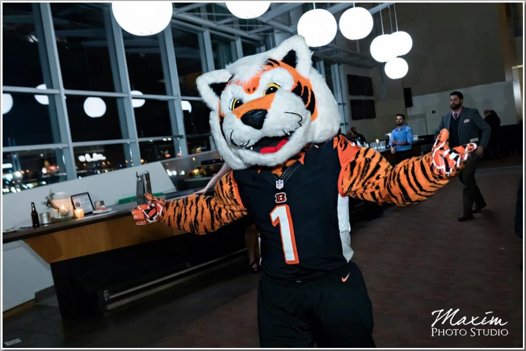 Who Dey Cincinnati Wedding Photographer Paul Brown Stadium