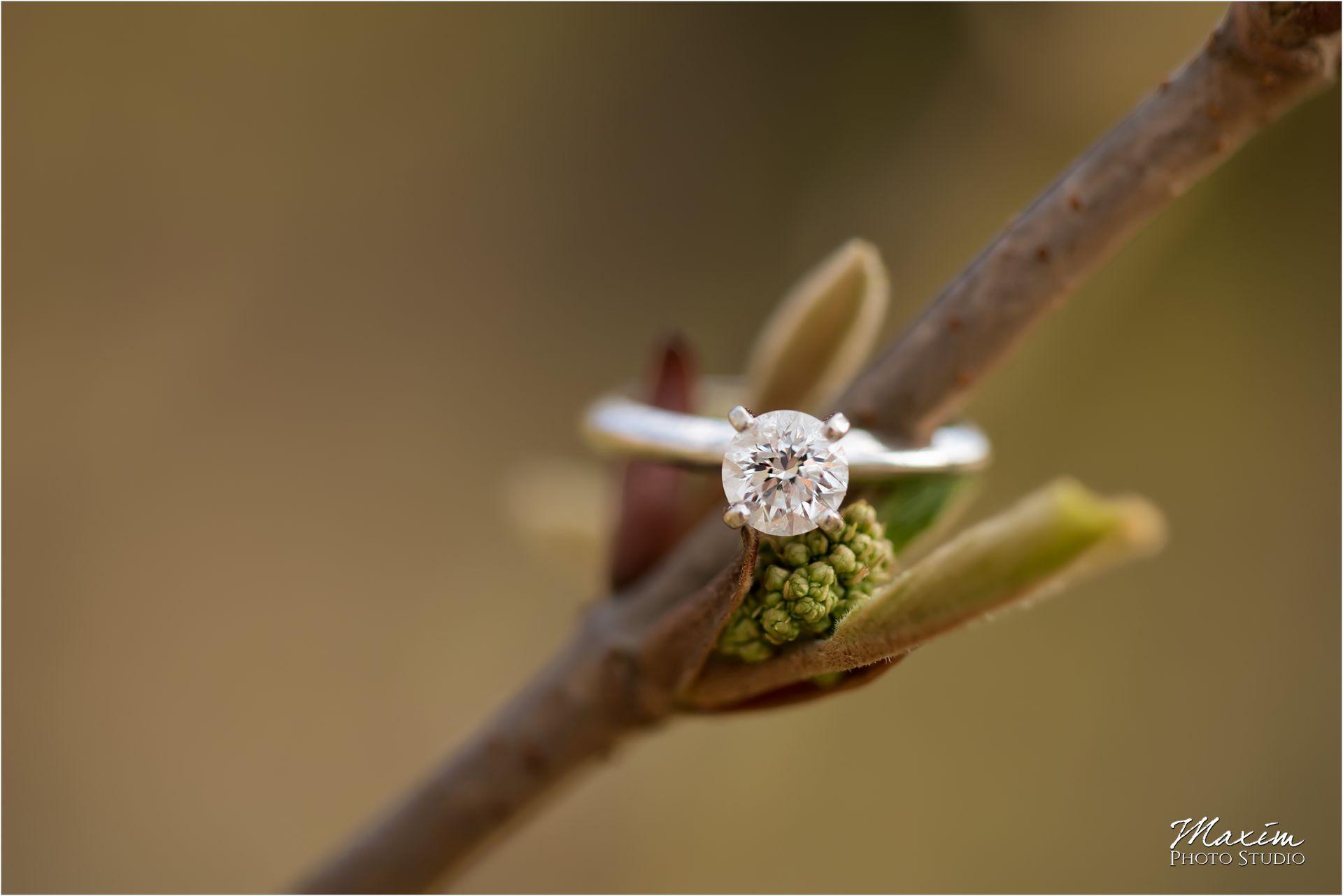 Cincinnati Wedding Photographers Ault Park Pavilion Engagement ring