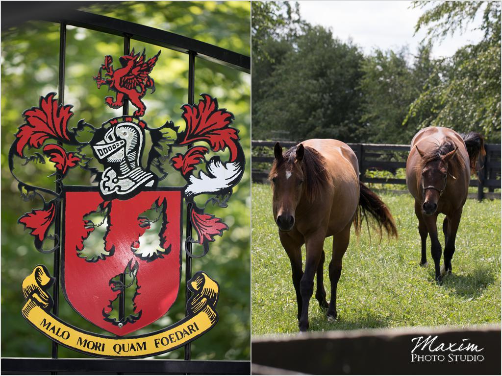Ohio countryside wedding horse farm