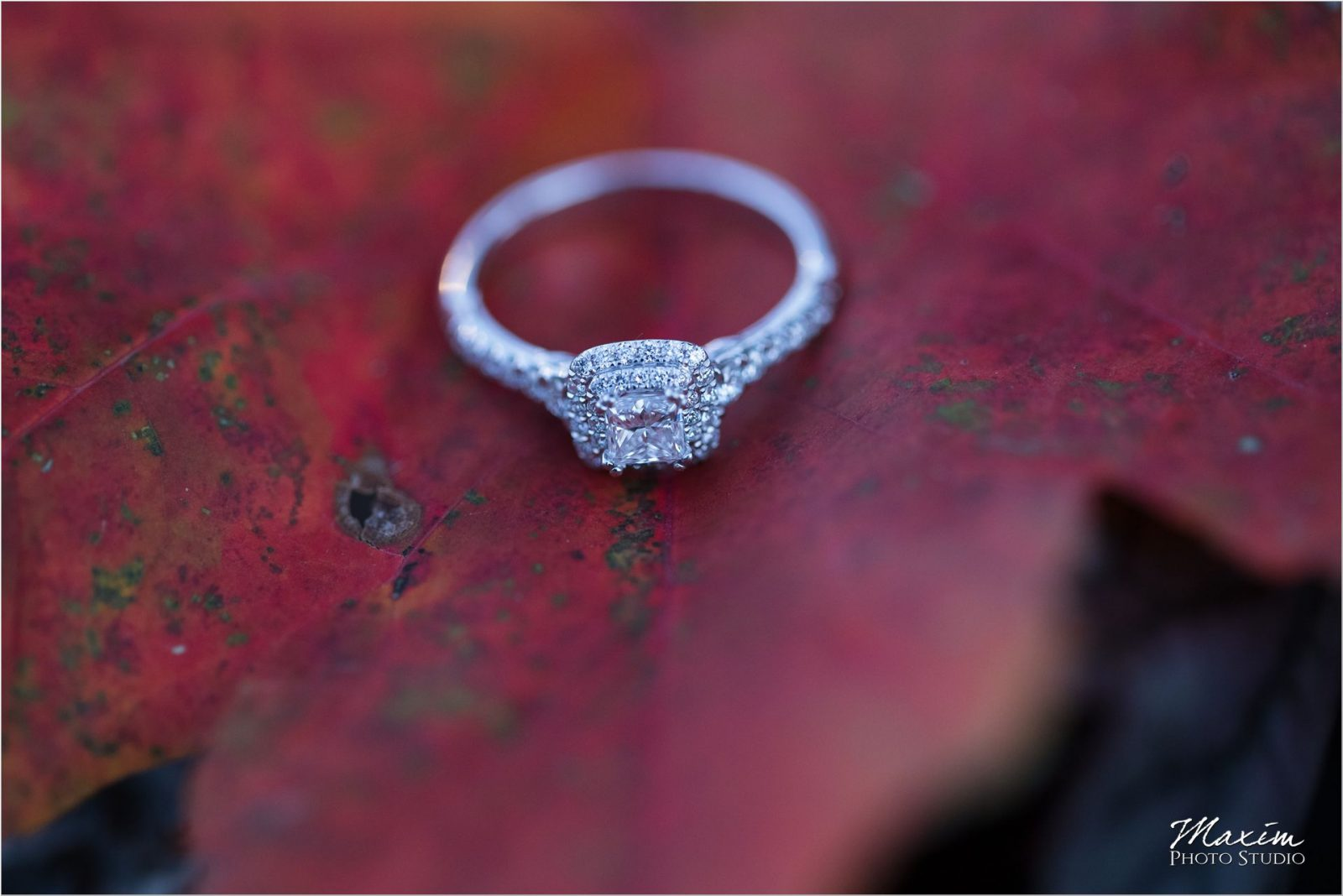 Ault Park Cincinnati Fall engagement ring