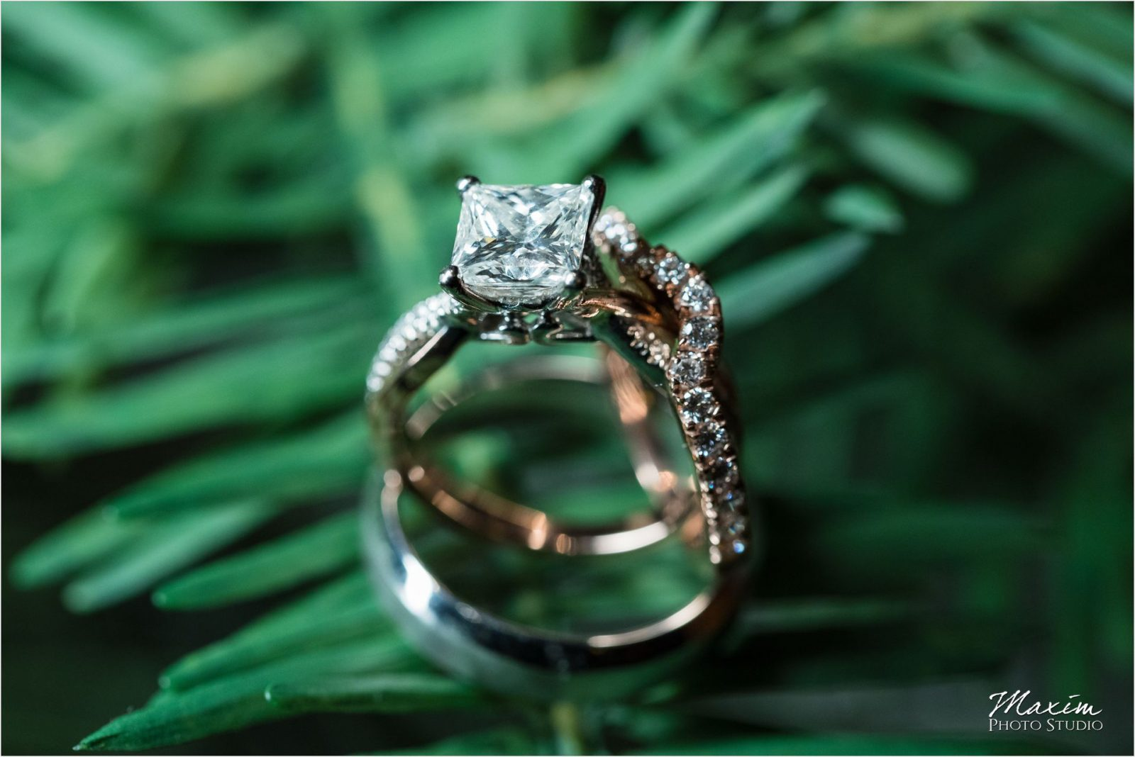 Drees Pavilion Cincinnati Wedding rings