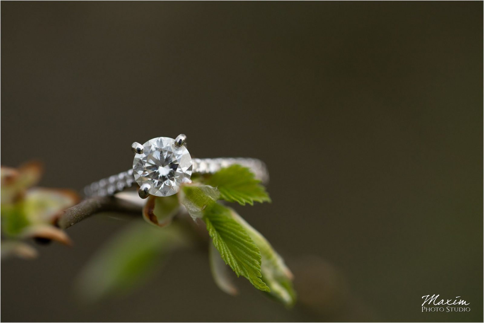 Cincinnati Wedding Photographers Kentucky Farm Engagement ring